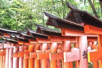 160605_Japan_3128