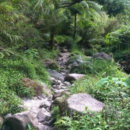 Beautiful nature on the last meters