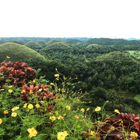 Beautiful Chocolate hills
